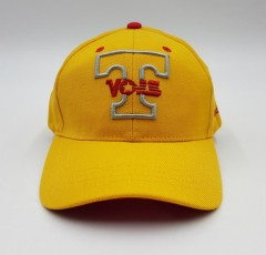 MITCHELL AND NESS Mens Cap (YELLOW) (Free Size )