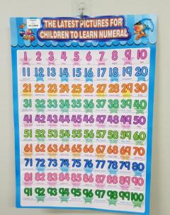 Educational Wall Chart