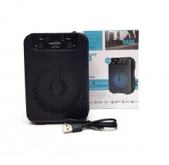 GTS-1345 Wireless Speaker